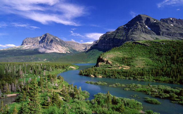 File:Forest-at-the-mountains.jpg