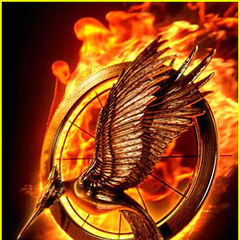 Affiche The Hunger Games - Catching Fire