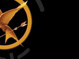 Hunger Games (libro)