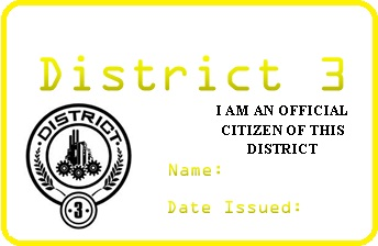 District 3 Permit