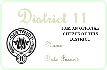 District 11 permit