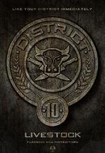 District Ten