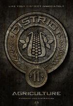 District Eleven