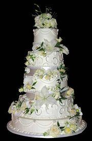 MOON'S CAKE