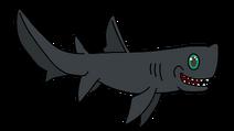Black Dogfish
