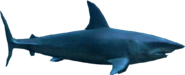 Deep blue sea mako shark png by sonic2006fan-dca2jn5