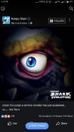 Mystery Shark(2)