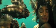 Piranha-3D1
