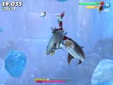 Evil Bull Shark