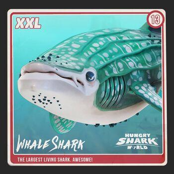 Whale Shark | Hungry Shark Wiki | FANDOM powered by Wikia