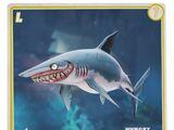 Mako Shark (HSW)