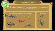 S-level Information