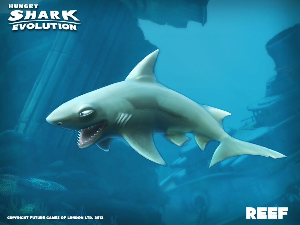 shark hungry shark wiki fandom powered by wikia