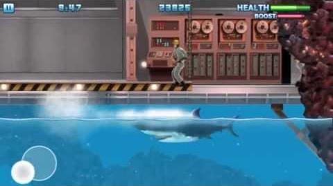 Hungry Shark 3 Gameplay