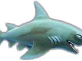 Reef Shark (HSE)