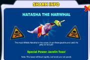 NatNarwhalInfo
