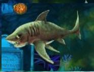 Evil tiger shark zombified