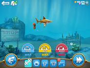 Max stats reef