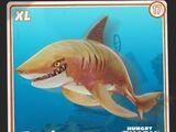 Tiger Shark (HSW)