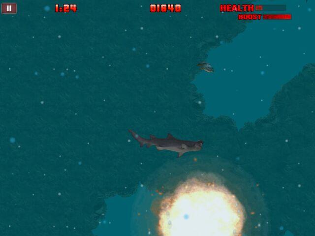 File:Tiger Shark (HSN).jpg