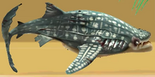 Evil whale shark