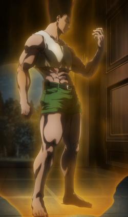 Gon adulto Anime
