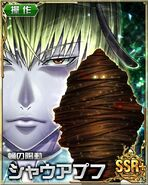HxH Battle Collection Card (976)