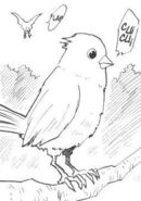 Fisher Bird Manga
