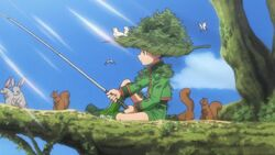 Gon trying to catch the master of the swamp