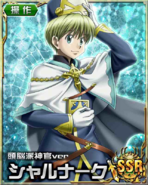 HxH Battle Collection Card (488)