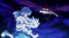 Killua VS Shaiapouf