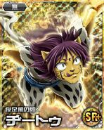 Cheetu card 10