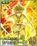 HxH Battle Collection Card (150)