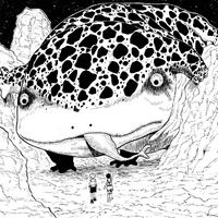 Melanin Lizard