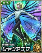 HxH Battle Collection Card (223)