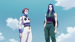 Hisoka and Illumi - 141