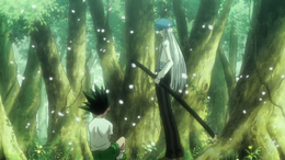76 - Kite meets young Gon