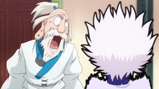 19 - Netero and Killua