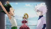Gon killua, g.i. end