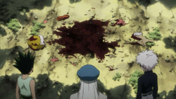 Gon, Kite and Killua arrives at Ponzu's corpse