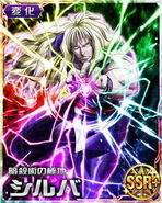 HxH Battle Collection Card (439)