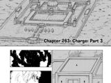 Chapter 263