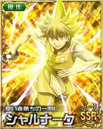 HxH Battle Collection Card (148)