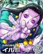 HxH Battle Collection Card (1247)