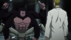 Phinx vs Gorilla