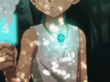 Paladin's Necklace