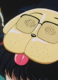 Togashi anime