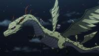 117 - Zoldyck dragon