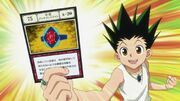 Gon with the Lucky Alexandrite card