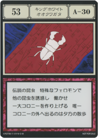 King Great White Beetle (G.I card) =scan=